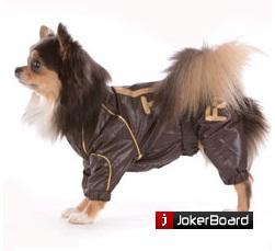 Каприз одежда для собак