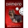 Груминг-салон DIAMOND  в ЦАО