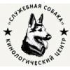 Дрессировка собак с передержкой