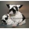 Карликовые крольчата всех пород!
