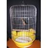 Клетку для попугая продам,  3 клетки разные для различных размеров попугаев
