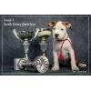 Питомник предлагает  эксклюзивных щенков Амстаффа