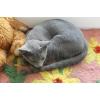 Русские голубые котята из питомника